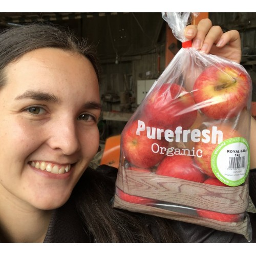 PUREFRESH ORGANIC ROYAL GALA APPLES 1 KG Bag