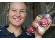 NEW SEASONS  BEAUTY APPLES  1 KG Bag Hawkes Bay Grown