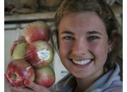 NEW SEASONS SUNRISE APPLES Bag of 7 Hawkes Bay Grown