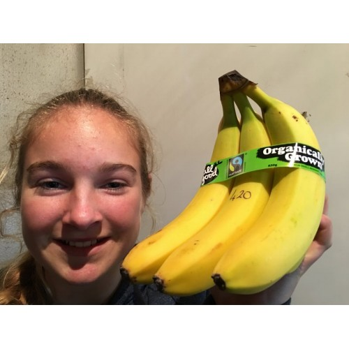 FAIRTRADE ALL GOOD BANANAS Bunch of 5 Organically Grown from Ecuador