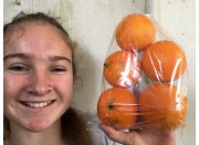 NAVELINA ORANGES Bag Spray Free Katikati Grown