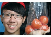 TOMATOES Hot House Medium Size 500 Gram Bag Pukekohe Grown
