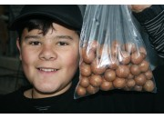 SPRAY FREE MACADAMIA NUTS  500 Gram Bag Katikati Grown