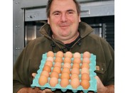OTTO'S FREE RANGE EGGS SIZES 6's & 7's TRAY OF 30 EGGS Laid In Katikati