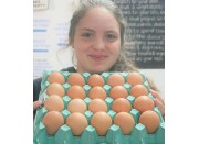 OTTO'S FREE RANGE EGGS SIZE 7 TRAY OF 20 EGGS Laid In Katikati