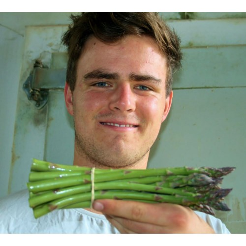 SPRAY FREE ASPARAGUS 250 GRAM Bunch Waikato Grown