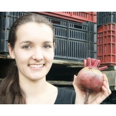 SPRAY FREE BEETROOT Medium Size Red Each  Katikati Grown
