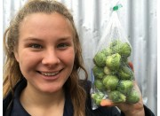 NEW SEASONS BRUSSEL SPROUTS  400 Gram Bag  Ohakune Grown