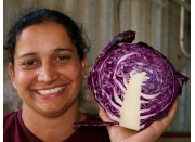 SPRAY FREE RED CABBAGE HALF Katikati Grown