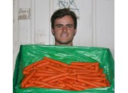NEW SEASONS FRESH HARVESTED WASHED OHAKUNE CARROTS  20KG Box