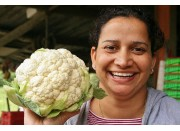 SPRAY FREE CAULIFLOWER  Medium Size  Each Katikati Grown