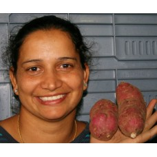 NEW SEASONS KUMARA  1 KG Medium Size Northland Grown