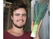 LEEK  Each  Katikati Grown