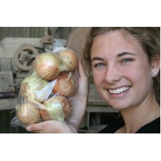 NEW SEASONS EARLY ONIONS  1.2 KG Bag Pukekohe Grown
