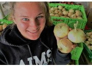 LONG KEEPER ONIONS  3 Medium Size  Pukekohe Grown