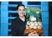 NEW SEASONS FRESH DUG DRIVER POTATOES  10KG Bag Pukekohe Grown