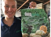 NEW SEASONS MOONLIGHT POTATOES  10 KG Bag Pukekohe Grown