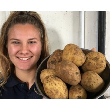 NEW SEASONS RUA POTATOES  2 KG Bag Pukekohe Grown