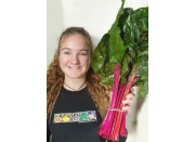 SPRAY FREE CHARD  Bunch Katikati Grown