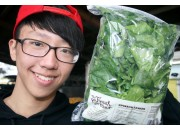 SPINACH SMALL SIZE LEAVES  300Gram Bag  Pukekohe Grown