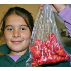 NEW SEASONS YAMS  350 Gram Bag  Palmerston North Grown